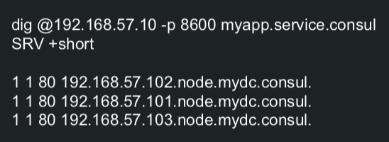 DNS SRV
