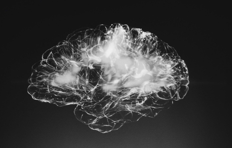 Quels sont les algorithmes de deep learning ?